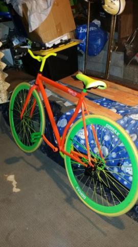g fixied bike custom made.gatorate colors