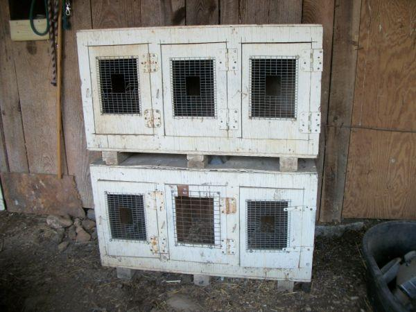 Gamefowl Rest Stalls & Asils - $50 (Whitwell, Tn.)