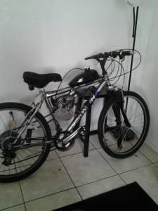 Bicycle Bicycles For Sale Florida
