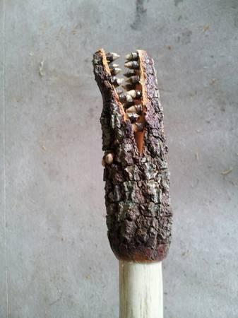 Gator Walking Sticks - $35