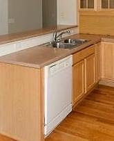 GE Profile Built-in Dishwasher with Smartdispense Technology