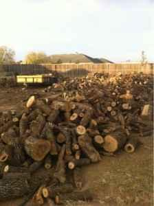 Get it while you can -- Oak Firewood - $175 (Lubbock