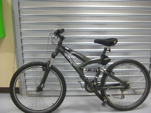 Giant Warp DS Mountain-Bike - $350