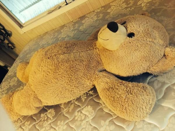 Gigantic Teddy Bear! Practically brand new!! - $20