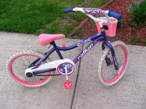 Bikes For Sale In Holland Mi Girls