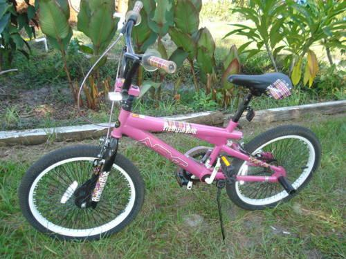 Bike Pegs For Sale Girls BMX Bicycle Pretty in