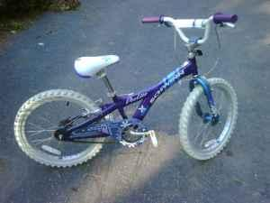 Girls Scwinn deelite 20in bike - $50 (Somers,CT)