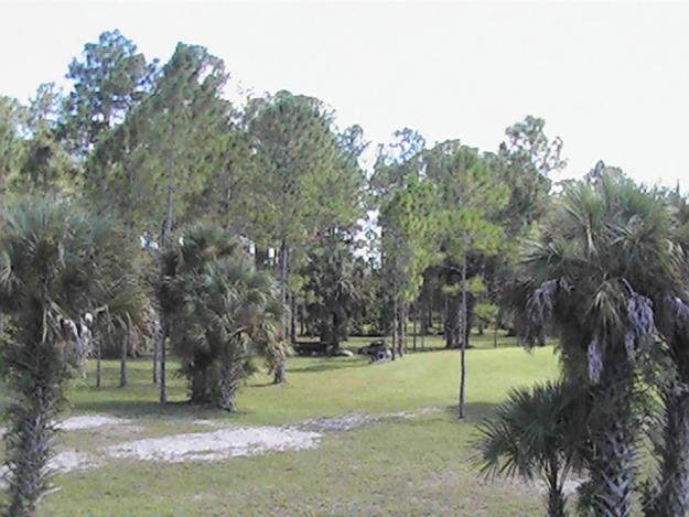 Apartments For Rent In Golden Gate Naples Fl