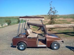 Golf cart - $1250 (sanger)