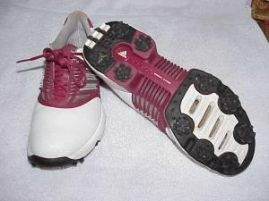 Golf Shoes - $1 (Englewood)