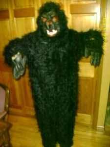 Gorilla Costume for Halloween - $40 Delavan, WI