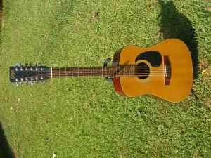 Goya 12-String Dreadnaught Acoustic Guitar G415 N
