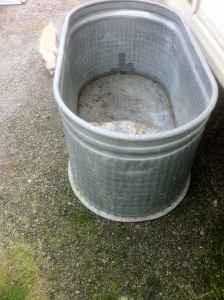 Great for horses,cows,goats,pigs - $80 (South Eugene)