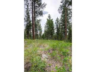 HAMILTON, MT Ravalli Country Land 5.01 acre