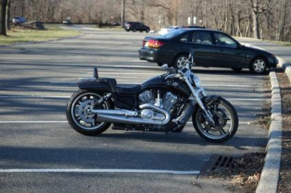 Harley Davidson Vrod Muscle For Sale In Union City New Jersey