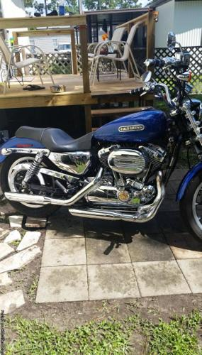 Harley Sportster 1200 XL Low