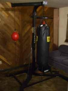 Heavy bagspeed bagdouble end bag with stand - $150 North Pole