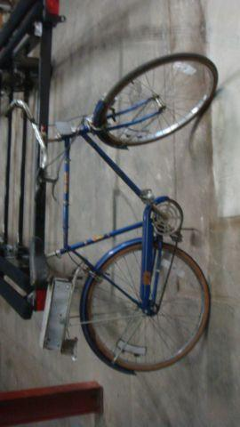 Hipster fixer upper bicycles - Free Spirit mens &