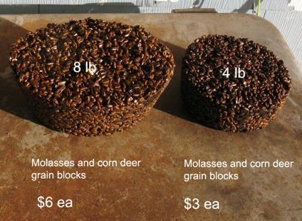 Homemade deer elk grain block
