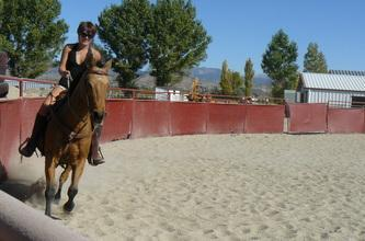 Horse Boarding Minden, NV Indoor and out door Arenas,
