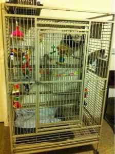 Huge Animal Cage - $120 (Clarksville)