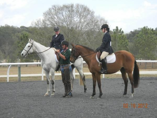 Hunter/Jumper Riding Lessons