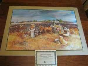 jack deloney limited edition print plantation cotton