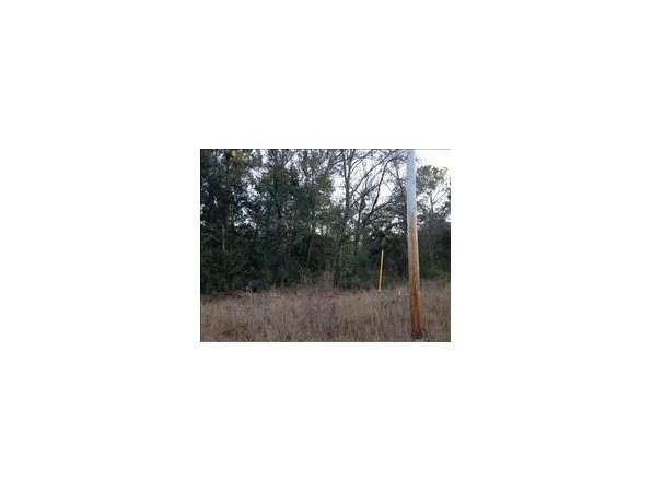 Keystone Heights, FL Clay Country Land