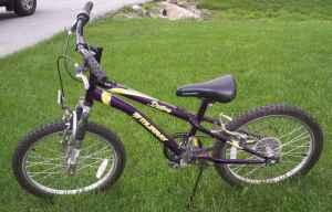 kid or youth murray mountain bike 7 speed east berlin or dover for sale in york. Black Bedroom Furniture Sets. Home Design Ideas
