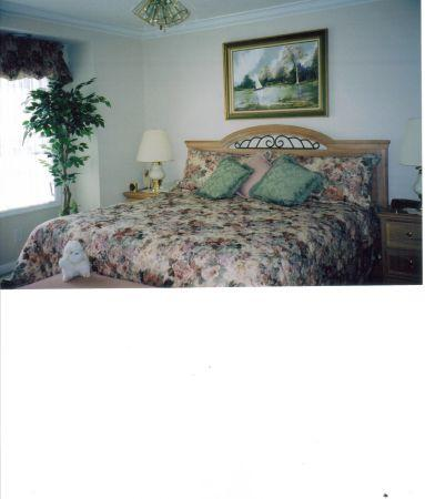 King Size Comforter w/ bedskirt and pillow shams - $50
