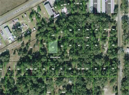 Land for Development in Marion, Florida, Ref# 3239237