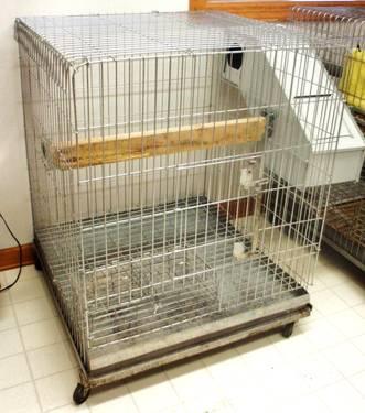 LARGE CHROME BIRD / PET CAGE