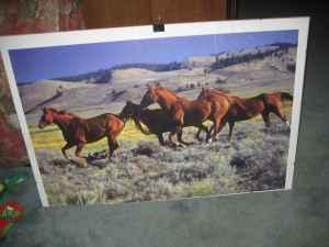 Large Framed Horse Poster Wild Mustang Fury Horses