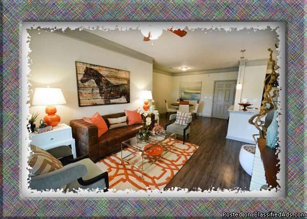 For Rent In Bellerose Terrace New York Classified