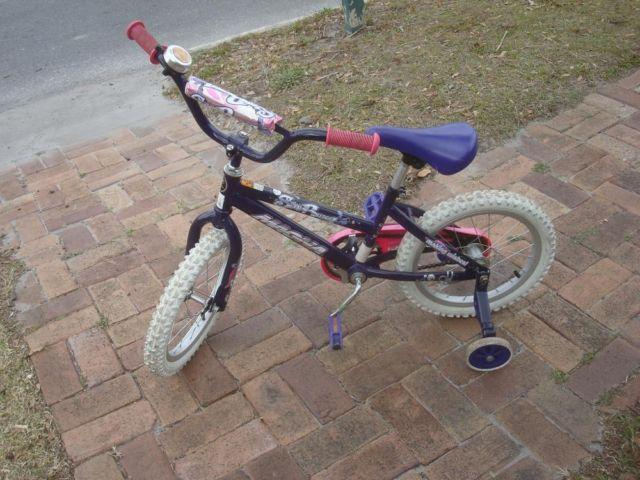 Little Girl's Starburst Bicycle - 18