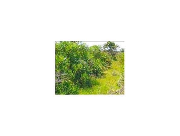 lorida fl highlands country land for sale in lorida