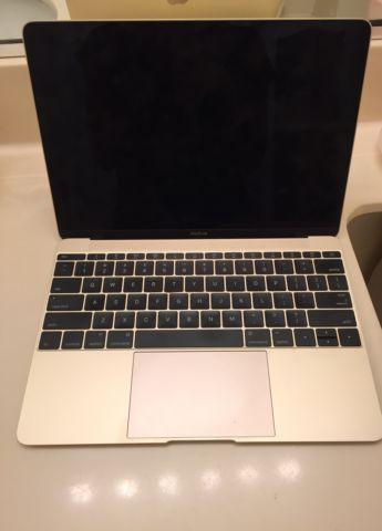 Macbook Retina (Gold)
