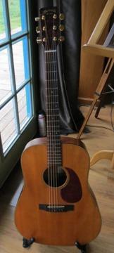 Martin Smartwoods Guitar