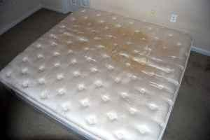 Mattress & Bed Frame (Superior)