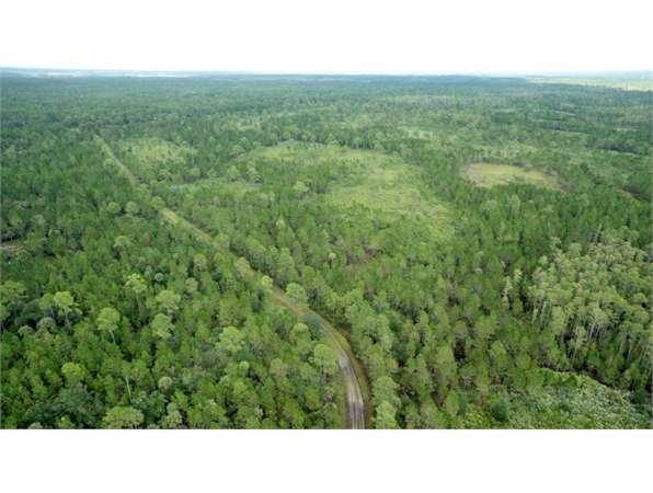 Mims, FL Volusia Country Land 2600 acre