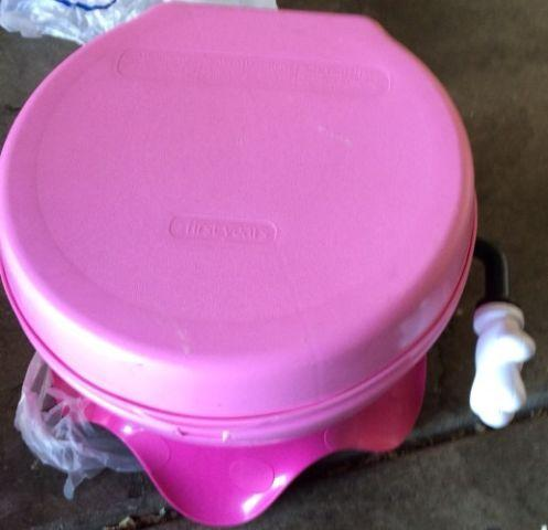 Minnie mouse potty chair amazon