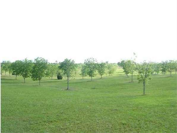 MOLINO, FL Escambia Country Land 70.230000 acre