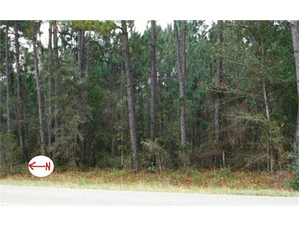 Morriston, FL Levy Country Land 20.500000 acre