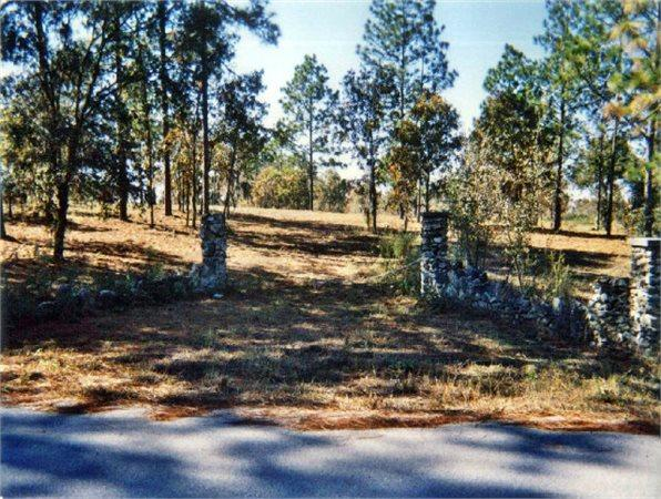 Morriston, FL Levy Country Land 35.100000 acre