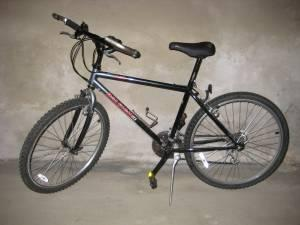 Mountain Bike - Raleigh - $100 (East Hartford)
