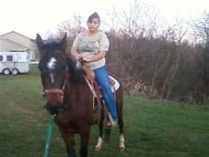 Mule,Ponies,Horses available for adoption - (chillicothe