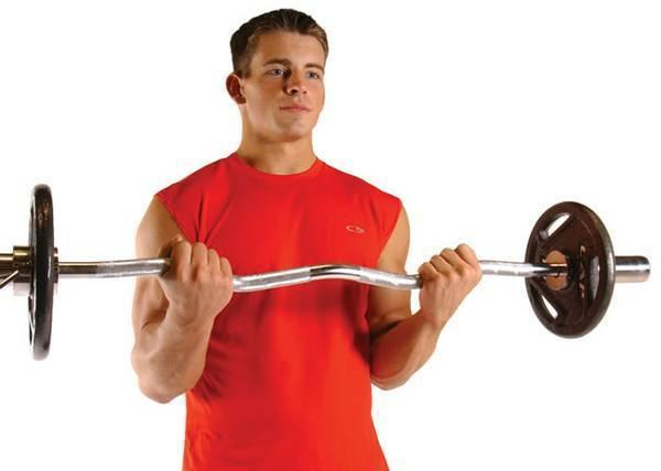 New Troy Barbell Olympic Free Weight Lifting Curling