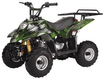 new youth size 110cc atv for sale in oconto wisconsin. Black Bedroom Furniture Sets. Home Design Ideas