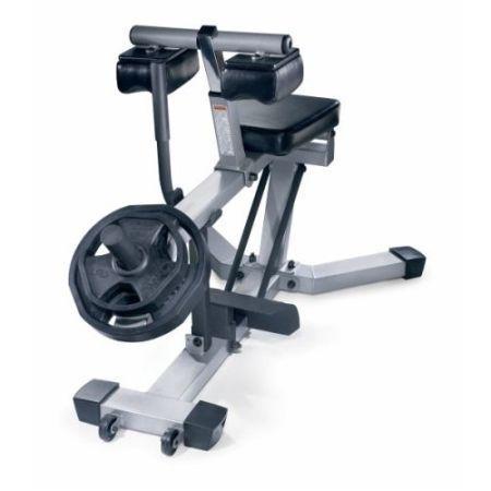 seated calf raise machine for sale