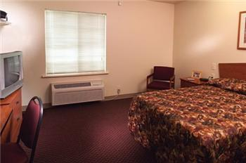 No Lease, No Credit Check, Furnished Studio $159